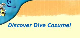 discover dive cozumel